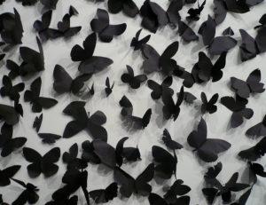 Papillons noirs pour Nuit blanche