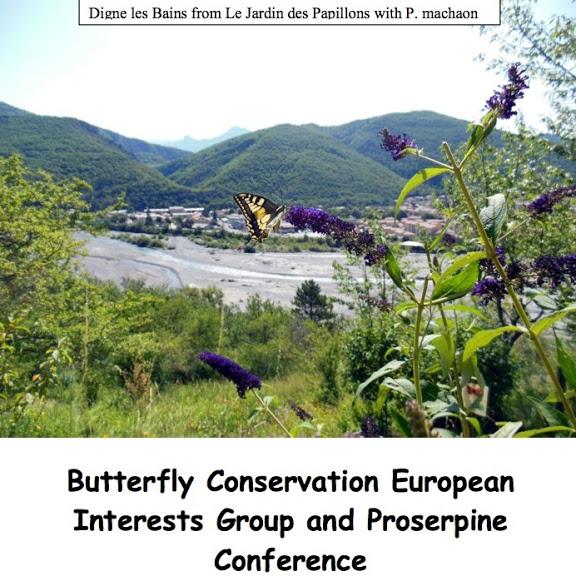 Une Conférence sur la conservation des papillons en France